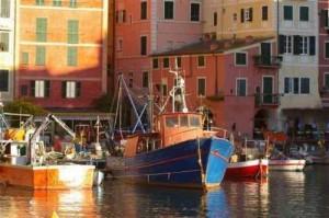 imbarcazioni di pescatori nel porticciolo di Camogli